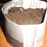 Newspaper Seed Pots Again!