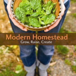 Homesteader Reunion Weekend