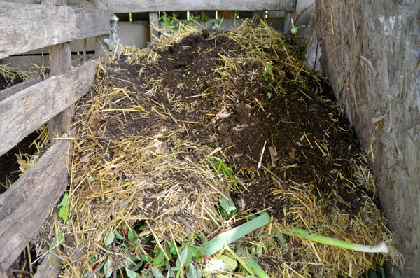 compost-layers