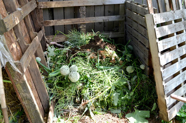 greens-compost-layer