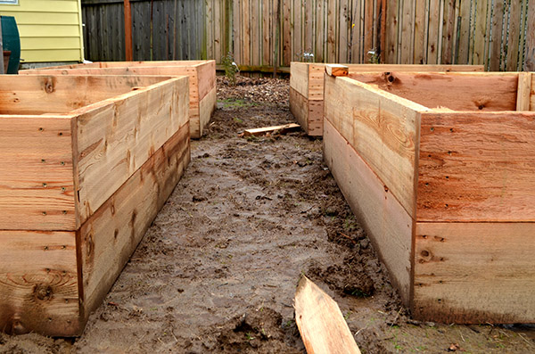 raised-bed-spacing