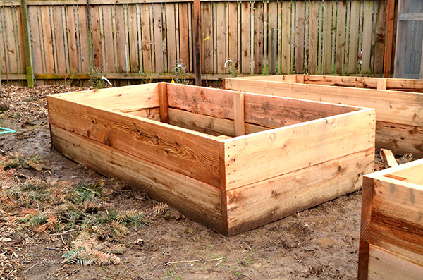 raised-beds-finished
