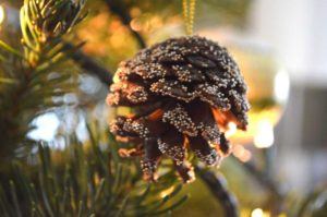 solstice-tree-pinecone