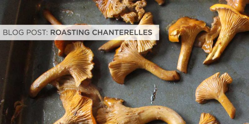 fi-roasting-chanterelle-mushrooms2