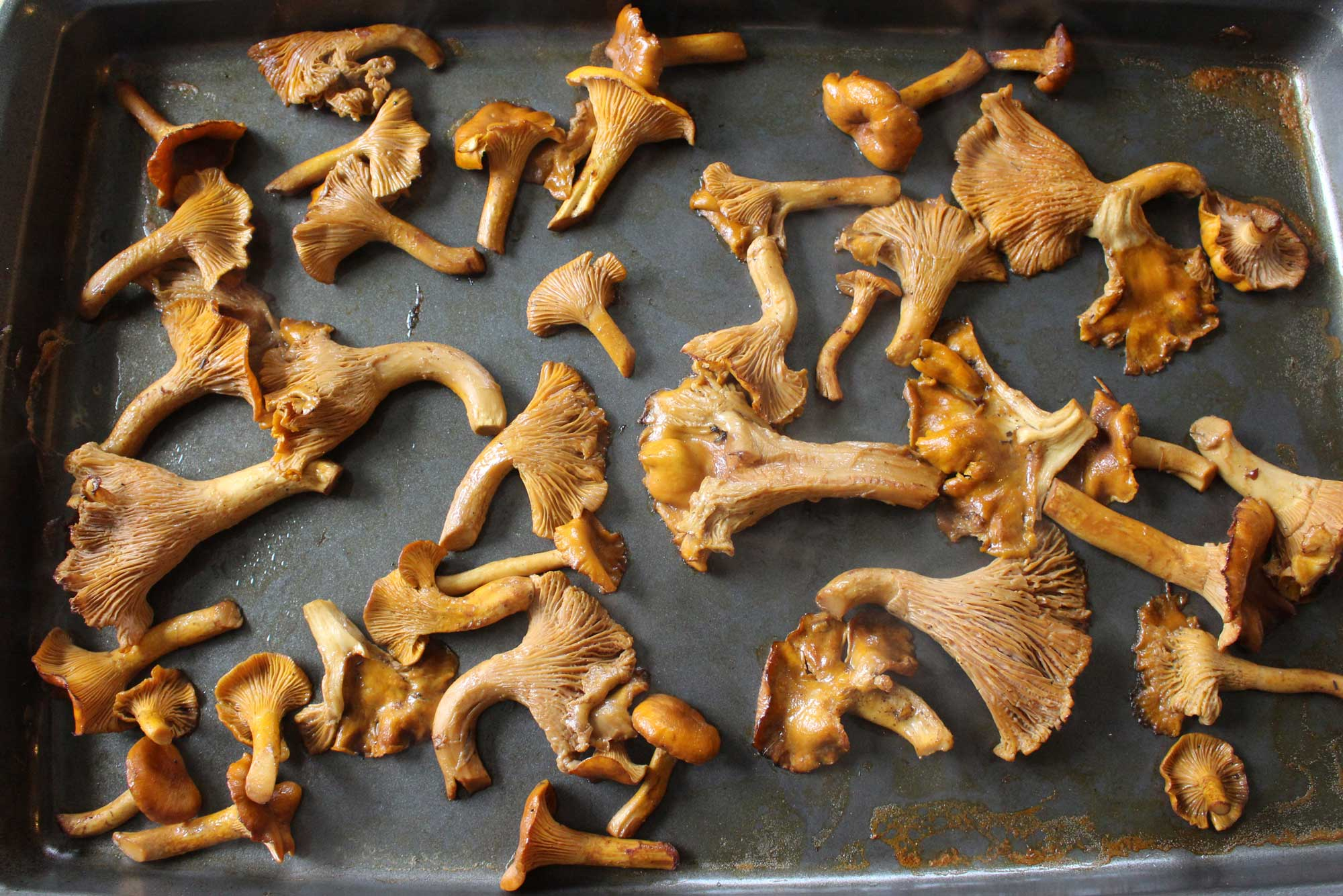 chanterelles-roasted-done
