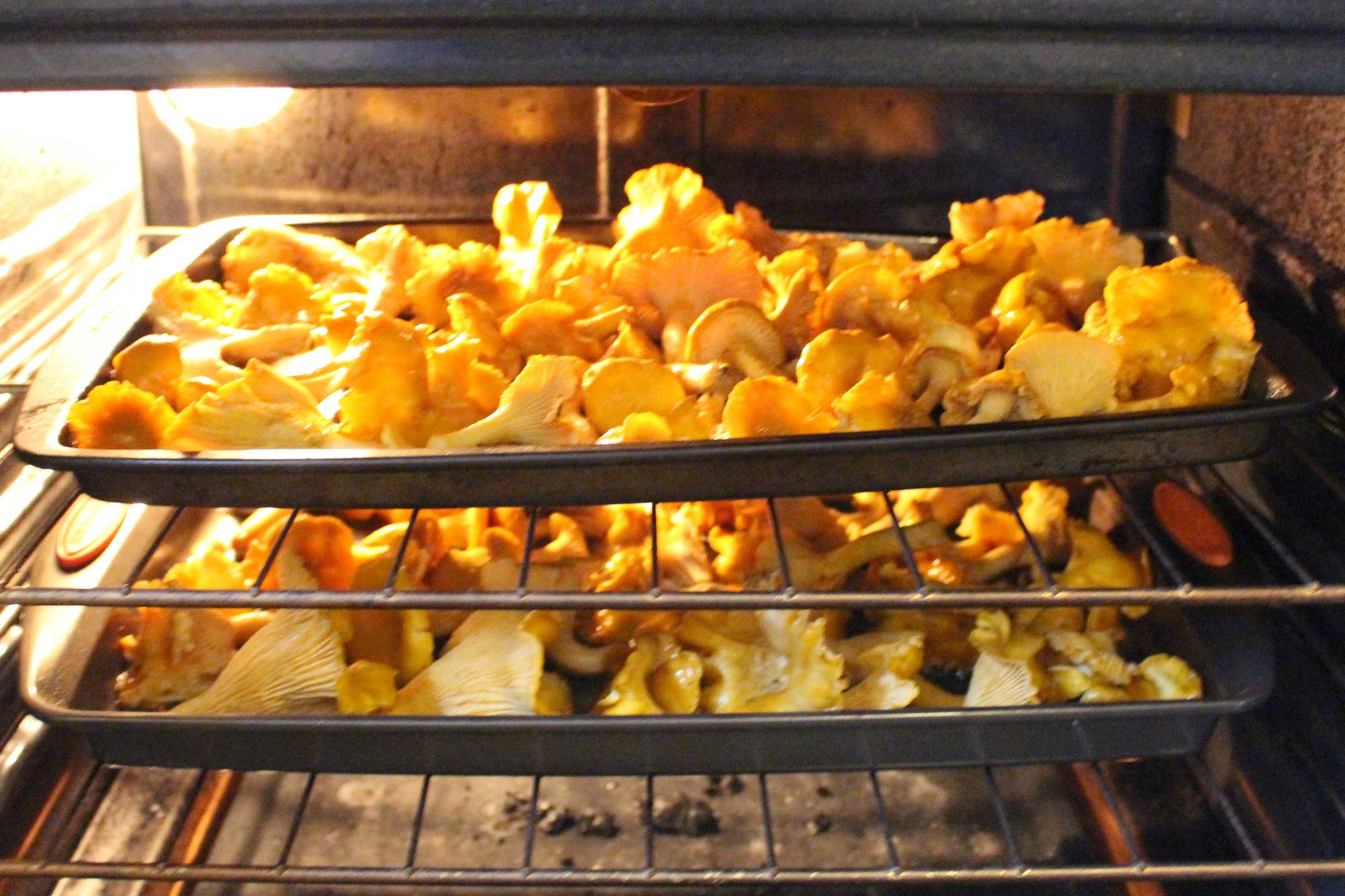 chanterelles-roasting-batches